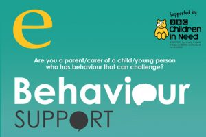 Behavior support poster